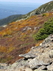 Franconia Ridge Color